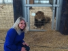 Carri Wilbanks meeting lions rescued from Zanesville, Ohio. 