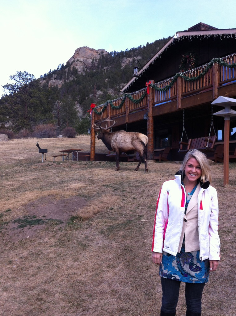 Chances are you will meet Lefty, the elk who has made McGregor Mountain Lodge his own home.