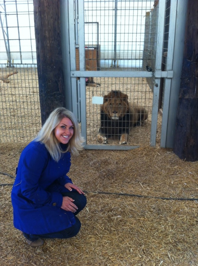 The Bolivian Lion House is also home to four lions rescued from Zanesville, Ohio when nearly 50 exotic animals were freed.