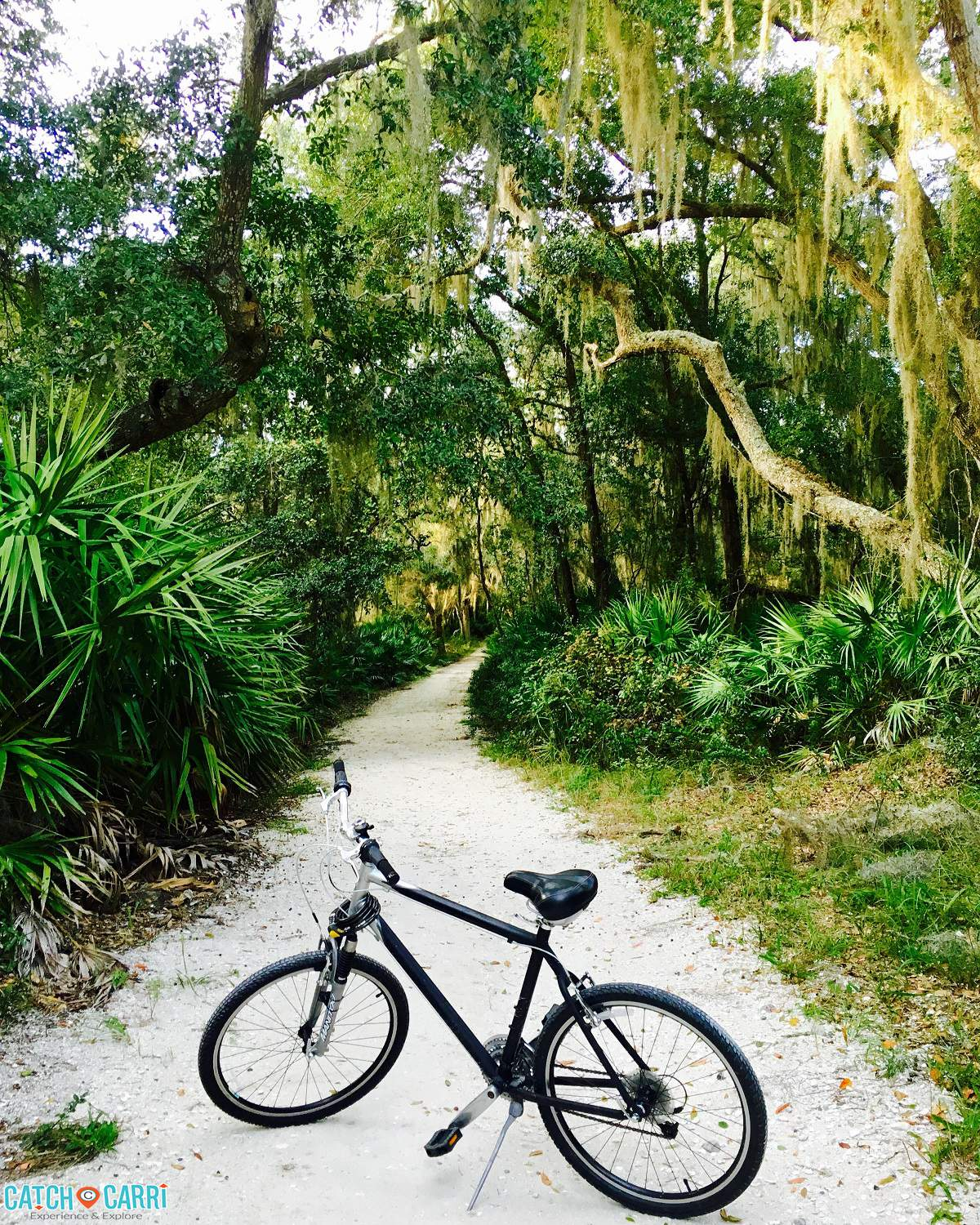 Things To Do And See In Jekyll Island